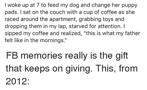 "Memes, Couch, and The Gift: I woke up at 7 to feed my dog and change her puppy  pads. sat on the couch with a cup of coffee as she  raced around the apartment, grabbing toys and  dropping them in my lap, starved for attention.  sipped my coffee and realized, ""this is what my father  felt like in the mornings."" FB memories really is the gift that keeps on giving. This, from 2012:"