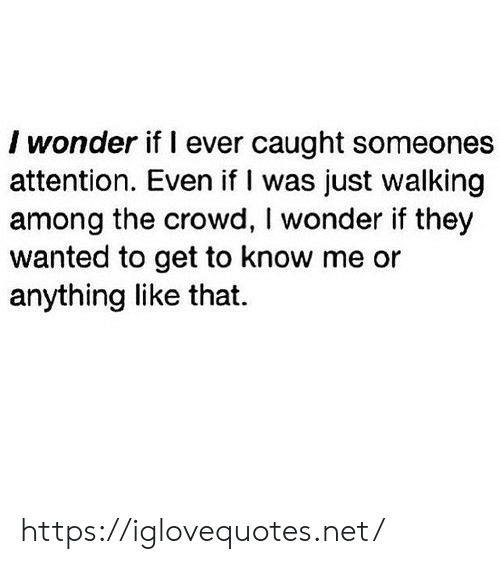 crowd: I wonder if I ever caught someones  attention. Even if I was just walking  among the crowd, I wonder if they  wanted to get to know me or  anything like that. https://iglovequotes.net/
