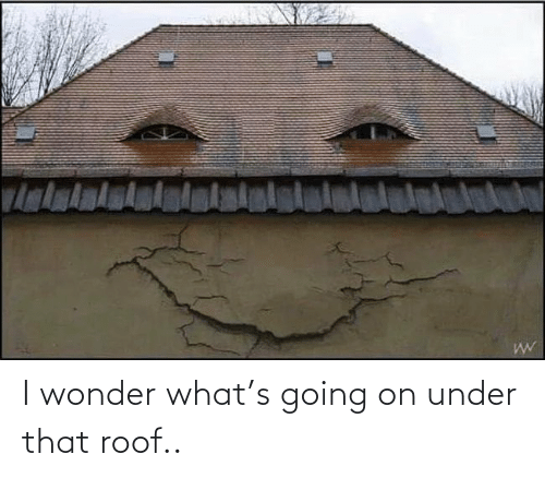 i wonder: I wonder what's going on under that roof..