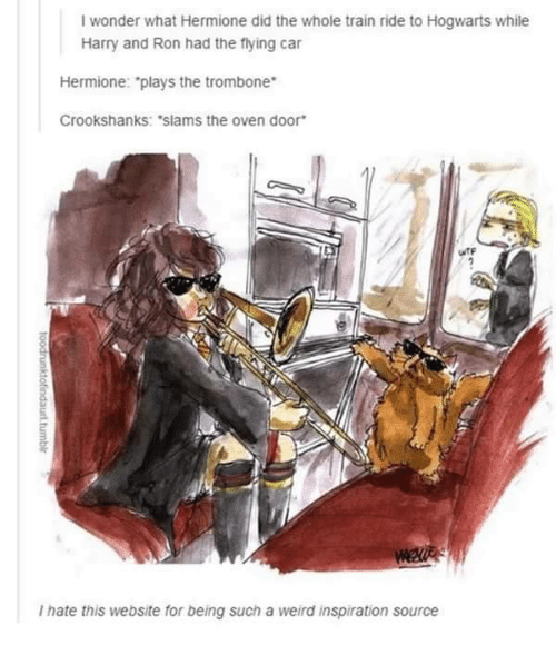 """train ride: I wonder what Hermione did the whole train ride to Hogwarts while  Harry and Ron had the flying car  Hermione: """"plays the trombone  Crookshanks: """"slams the oven door  I hate this website for being such a weird inspiration source"""