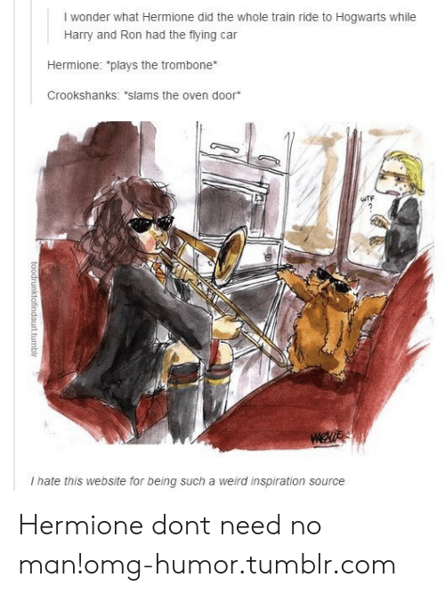 """train ride: I wonder what Hermione did the whole train ride to Hogwarts while  Harry and Ron had the flying car  Hermione: """"plays the trombone  Crookshanks: *slams the oven door  TF  I hate this website for being such a weird inspiration source Hermione dont need no man!omg-humor.tumblr.com"""