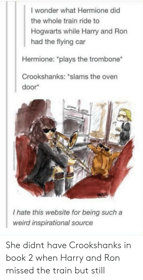"""train ride: I wonder what Hermione did  the whole train ride to  Hogwarts while Harry and Ron  had the flying car  Hermione: """"plays the trombone  Crookshanks: """"slams the oven  door  I hate this website for being such a  weird inspirational source She didnt have Crookshanks in book 2 when Harry and Ron missed the train but still"""