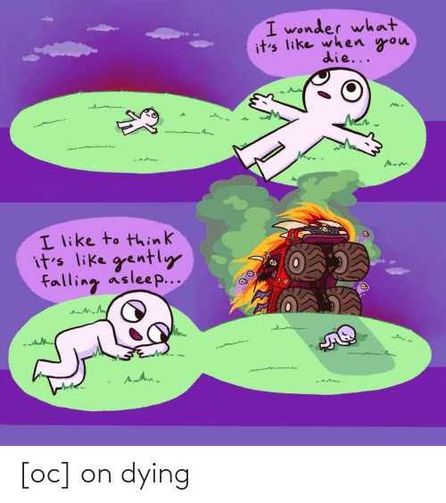 falling: I wonder what  it's like when you  die...  I like to think  it's like gently  falling asleep... [oc] on dying