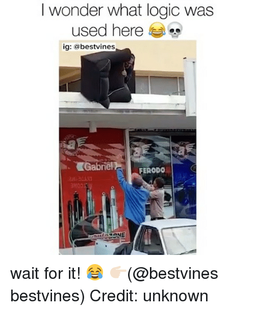 Logic, Memes, and Wonder: I wonder what logic was  used here  ig: @bestvines  Gabriel F  FERODO wait for it! 😂 👉🏻(@bestvines bestvines) Credit: unknown