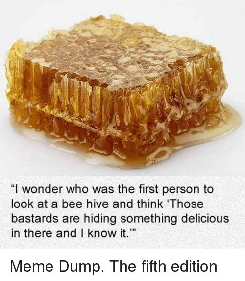 """hive: """"I wonder who was the first person to  look at a bee hive and think Those  bastards are hiding something delicious  in there and I know t Meme Dump. The fifth edition"""
