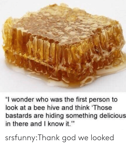 """hive: """"I wonder who was the first person to  look at a bee hive and think Those  bastards are hiding something delicious  in there andI know it""""  เท srsfunny:Thank god we looked"""