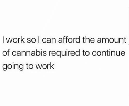 going to work: I work so I can afford the amount  of cannabis required to continue  going to work
