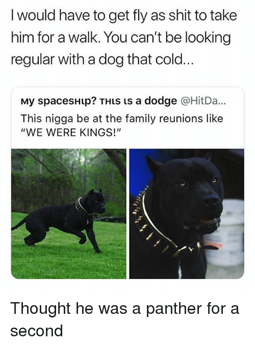 "Family, Shit, and Dodge: I would have to get fly as shit to take  him for a walk. You can't be looking  regular with a dog that cold..  My spacesHup? THIs is a dodge @HitDa...  This nigga be at the family reunions like  ""WE WERE KINGS!"" Thought he was a panther for a second"