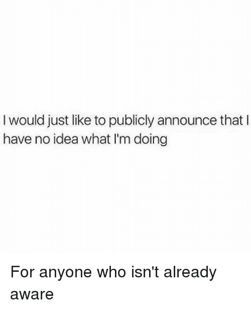 Funny, Announcement, and Idea: I would just like to publicly announce that l  have no idea what I'm doing For anyone who isn't already aware