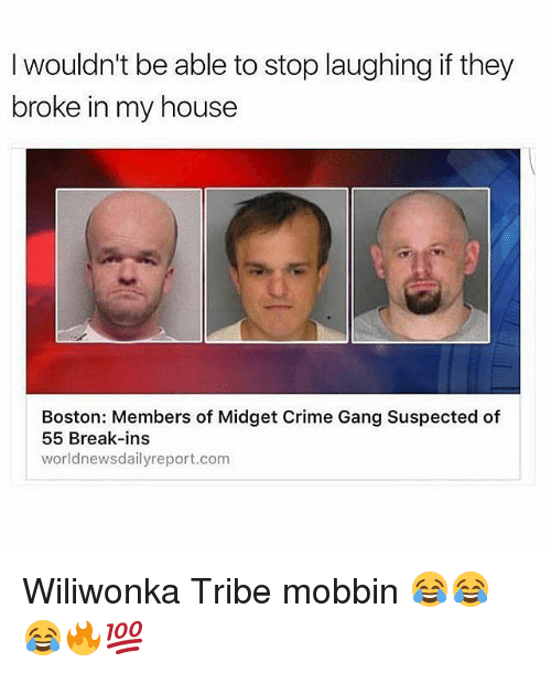 Crime, Memes, and My House: I wouldn't be able to stop laughing if they  broke in my house  Boston: Members of Midget Crime Gang Suspected of  55 Break-ins  world newsdailyreport.com Wiliwonka Tribe mobbin 😂😂😂🔥💯