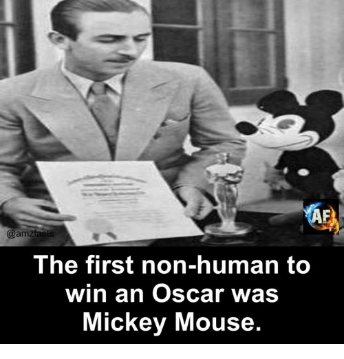 Memes, Mickey Mouse, and Mouse: IA  @amzfacts  The first non-human to  win an Oscar was  Mickey Mouse