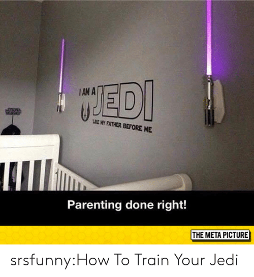 Parenting Done Right: IAM A  LKE MY FATHER BEFORE ME  Parenting done right!  THE META PICTURE srsfunny:How To Train Your Jedi