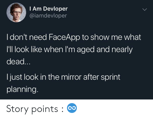Faceapp: IAm Devloper  @iamdevloper  Idon't need FaceApp to show me what  I'Il look like when I'm aged and nearly  dead...  I just look in the mirror after sprint  planning. Story points : ♾