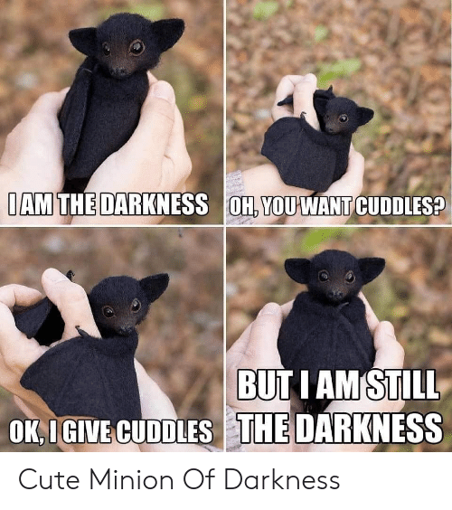 Minion: IAM THE DARKNESS OH, YOUWANT CUDDLES?  BUT I AM STILL  OK,IGIVE CUDDLES THE DARKNESS Cute Minion Of Darkness
