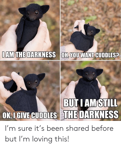 the darkness: IAM THE DARKNESS OH, YOUWANT CUDDLES?  BUTI AM STILL  OK IGIVE CUDDLES THE DARKNESS I'm sure it's been shared before but I'm loving this!