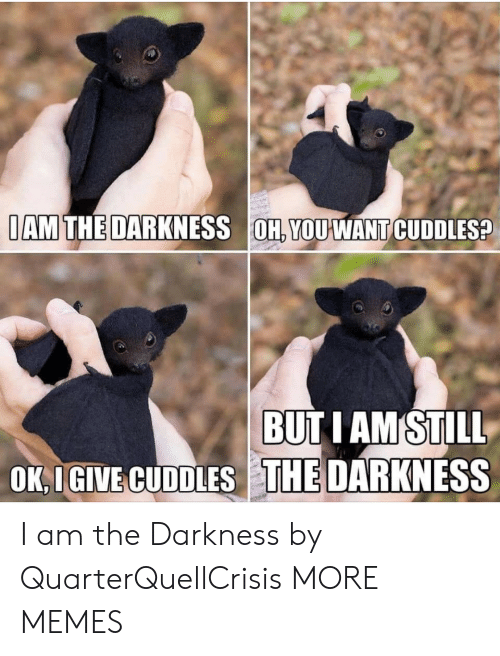 the darkness: IAM THE DARKNESS OH, YOUWANT CUDDLES?  BUTIAM STILL  OK, I GIVE CUDDLES THE DARKNESS I am the Darkness by QuarterQuellCrisis MORE MEMES
