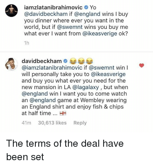 England, Memes, and Yo: iamzlatanibrahimovic Yo  avidbeckham if @england wins I buy  you dinner where ever you want in the  world, but if @swemnt wins you buy me  what ever I want from @ikeasverige ok?  1h  davidbeckham  @iamzlatanibrahimovic if @swemnt win I  will personally take you to @ikeasverige  and buy you what ever you need for the  new mansion in LA @lagalaxy , but when  @england win I want you to come watch  an @england game at Wembley wearing  an England shirt and enjoy fish & chips  at half time  41m 30,613 likes Reply The terms of the deal have been set