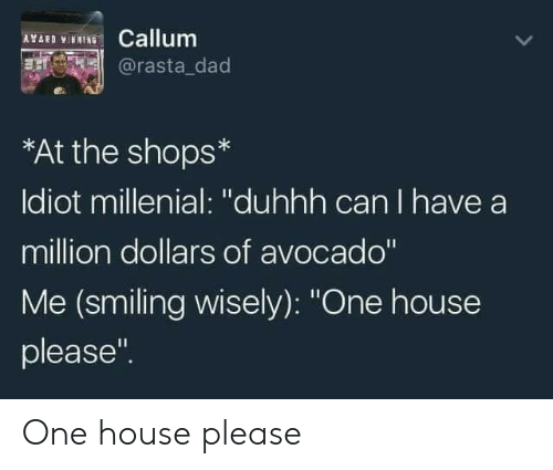 """rasta: ICallum  @rasta_dad  AYAR  *At the shops*  Idiot millenial: """"duhhh can I have a  million dollars of avocado""""  Me (smiling wisely): """"One house  please"""" One house please"""