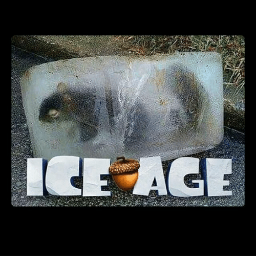 Memes, Ice Age, and 🤖: ICE AGE