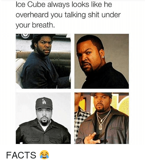 Facts, Ice Cube, and Shit: Ice Cube always looks like he  overheard you talking shit under  your breath. FACTS 😂