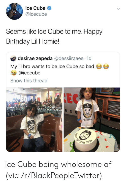 icecube: Ice Cube  @icecube  Seems like Ice Cube to me. Happy  Birthday Lil Homie!  desirae zepeda @dessiiraaee 1d  My lil bro wants to be Ice Cube so bad  @icecube  Show this thread  FIEC  You Know  3  BIRTHDAY  JOSH  HAPPY Ice Cube being wholesome af (via /r/BlackPeopleTwitter)