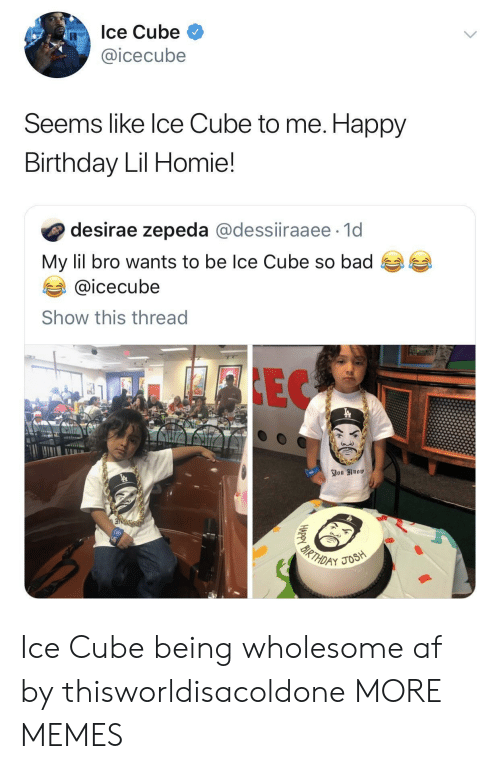 icecube: Ice Cube  @icecube  Seems like lce Cube to me. Happy  Birthday Lil Homie!  desirae zepeda @dessiiraaee 1d  My lil bro wants to be Ice Cube so bad  @icecube  Show this thread Ice Cube being wholesome af by thisworldisacoldone MORE MEMES
