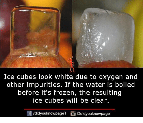 Frozenness: Ice cubes look white due to oxygen and  other impurities. If the water is boiled  before it's frozen, the resulting  ice cubes will be clear.  団/d.dyouknowpagel  G@didyouknowpage
