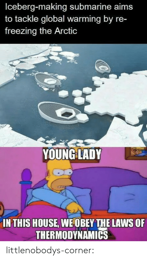 freezing: Iceberg-making submarine aims  to tackle global warming by re-  freezing the Arctic  YOUNG LADY  IN THIS HOUSE, WE OBEY THE LAWS OF  THERMODYNAMICS littlenobodys-corner: