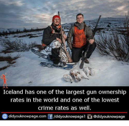 Crime, Memes, and Iceland: Iceland has one of the largest gun ownership  rates in the world and one of the lowest  crime rates as well  didyouknowpage.com囝/didyouknowpagel ǔ @didyouknowpage
