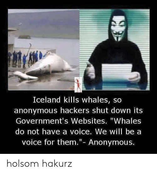 "Iceland: Iceland kills whales, so  anonymous hackers shut down its  Government's Websites. ""Whales  do not have a voice. We will be a  voice for them.""- Anonymous. holsom hakurz"