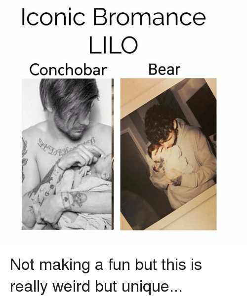 iconic bromance lilo conchobar bear not making a fun but 19860719 🅱 25 best memes about the art of screaming the art of