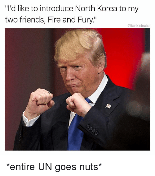"Fire, Friends, and Funny: ""I'd like to introduce North Korea to my  two friends, Fire and Fury.""  @tank.sinatra *entire UN goes nuts*"