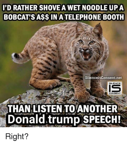 Bobcat: I'D RATHER SHOVEA WET NOODLE UPA  BOBCAT'S A$$INATELEPHONE BOOTH  Silence isConsent.net  IS  CONSENT  THAN LISTEN TOANOTHER  Donald trump SPEECHTS Right?
