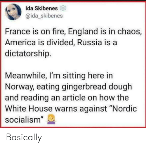 "Sitting Here: Ida Skibenes  @ida_skibenes  France is on fire, England is in chaos,  America is divided, Russia is a  dictatorship.  Meanwhile, I'm sitting here in  Norway, eating gingerbread dough  and reading an article on how the  White House warns against ""Nordic  socialism"" Basically"