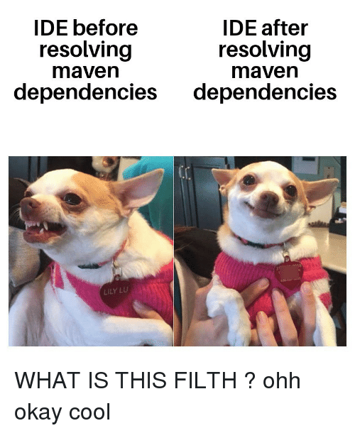 lily lu: IDE before  IDE after  resolving  maven  resolving  maven  dependencies dependencies  LILY LU WHAT IS THIS FILTH ? ohh okay cool