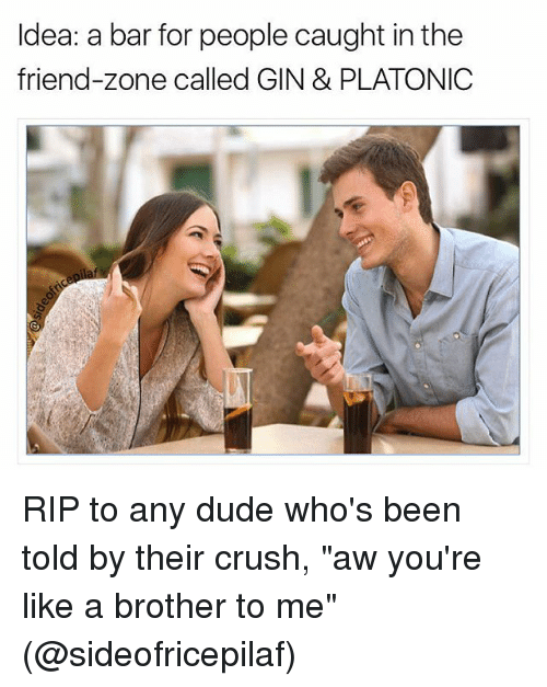"""Friend Zoning: Idea: a bar for people caught in the  friend-zone called GIN & PLATONIC RIP to any dude who's been told by their crush, """"aw you're like a brother to me"""" (@sideofricepilaf)"""