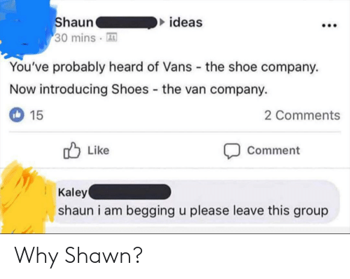 Shawn: ideas  haun  30 mins A  You've probably heard of Vans the shoe company.  Now introducing Shoes the van company.  2 Comments  15  Comment  Like  Kaley  shaun i am begging u please leave this group Why Shawn?