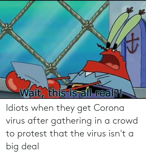 crowd: Idiots when they get Corona virus after gathering in a crowd to protest that the virus isn't a big deal