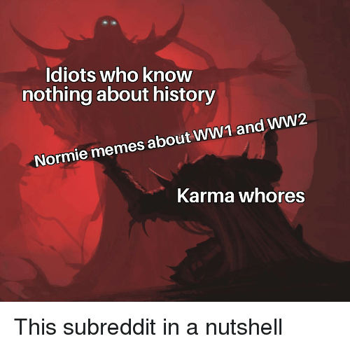 Memes, History, and Karma: Idiots who knovw  nothing about history  Normie memes about WW1 and WW2  Karma whores This subreddit in a nutshell