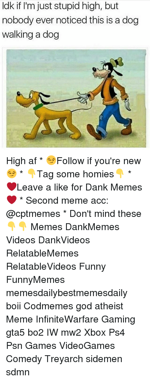 Atheist Meme: Idk if I'm just stupid high, but  nobody ever noticed this is a dog  walking a dog High af * 😏Follow if you're new😏 * 👇Tag some homies👇 * ❤Leave a like for Dank Memes❤ * Second meme acc: @cptmemes * Don't mind these 👇👇 Memes DankMemes Videos DankVideos RelatableMemes RelatableVideos Funny FunnyMemes memesdailybestmemesdaily boii Codmemes god atheist Meme InfiniteWarfare Gaming gta5 bo2 IW mw2 Xbox Ps4 Psn Games VideoGames Comedy Treyarch sidemen sdmn