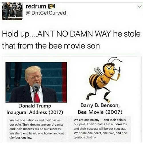 Bee Movie, Curving, and Memes: @iDntGet Curved.  Hold up. ...AINT NO DAMN WAY he stole  that from the bee movie son  Barry B. Benson,  Donald Trump  Inaugural Address (2017) Bee Movie (2007)  We are one colony and their pain is  We are one nation and their pain is  our pain. Thcir dreams are our dreams;  our pain. Their drcams are our dreams;  and their success will be our success.  and their success will be our success.  We share one heart, one home, and one  We share one heart, one hive, and one  glorious destiny.  glorious destiny.