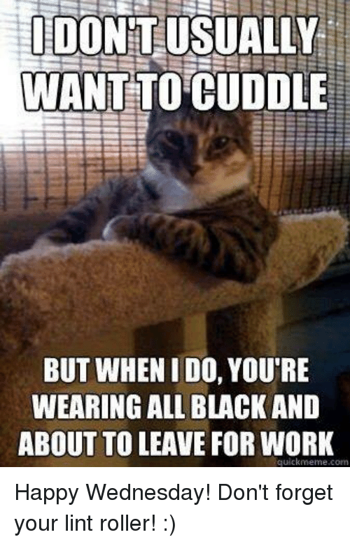 Quickmemes: IDO  WANT  TO CUDDLE  BUT WHEN I DO, YOU'RE  WEARING ALL BLACK AND  ABOUT TO LEAVE FOR WORK  quickmeme com Happy Wednesday! Don't forget your lint roller! :)
