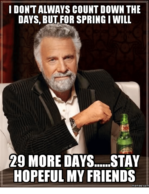 Spring, Com, and Friend: IDONTALWAYS COUNT DOWN THE  DAYS, BUT FOR SPRING I WILL  29 MORE DAYS......STAY  HOPEFUL MY FRIENDS  Memes COM