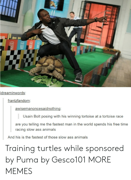 bolt: idreaminwords:  frantzfandom  awisemanoncesaidnothing:  Usain Bolt posing with his winning tortoise at a tortoise race  are you telling me the fastest man in the world spends his free time  racing slow ass animals  And his is the fastest of those slow ass animals Training turtles while sponsored by Puma by Gesco101 MORE MEMES