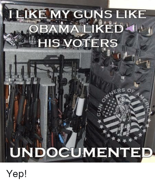 Guns, Memes, and 🤖: IEIKE MY GUNS LIKE  HIS VOTERS  ERS OR  UNDOCUMENTED Yep!