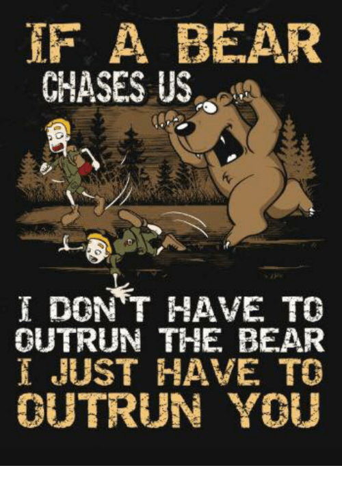 if-a-bear-chases-us-dont-have-to-outrun-