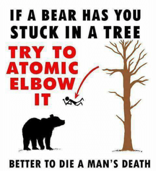 Bear, Death, and Tree: IF A BEAR HAS YOU  STUCK IN A TREE  TRY TO  ATOMIC  ELBOW  IT  44,  BETTER TO DIE A MAN'S DEATH