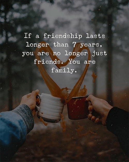 Just Friends: If a friendship lasts  longer than 7 years,  you are no longer just  friends. You are  family.