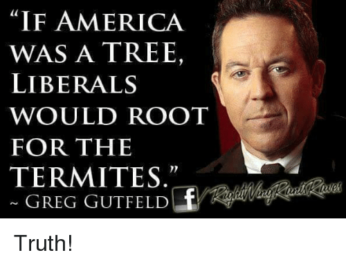 """America, Memes, and Tree: """"IF AMERICA  WAS A TREE,  LIBERALS  WOULD ROOT  FOR THE  TERMITES  GREG GUTFELD Truth!"""