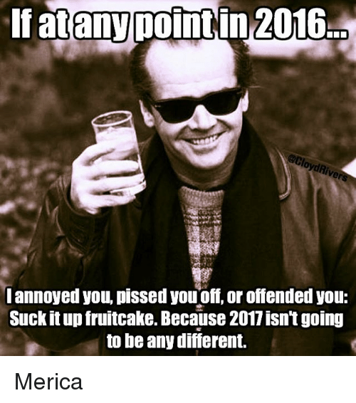Memes, Annoyed, and Annoying: If atany point in 2016  I annoyed you, pissed youoff or offended you:  Suck it up fruitcake. Because 2011 isntgoing  to be any difierent. Merica